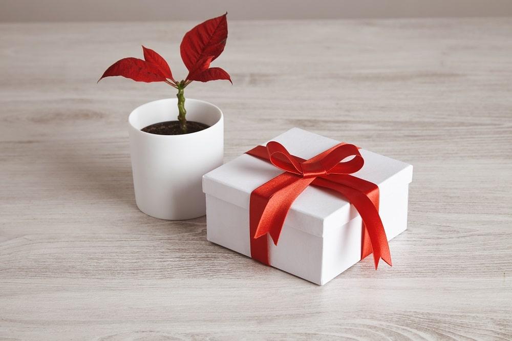 Quelles idées de cadeau personnalisé pas cher à offrir à un proche ?